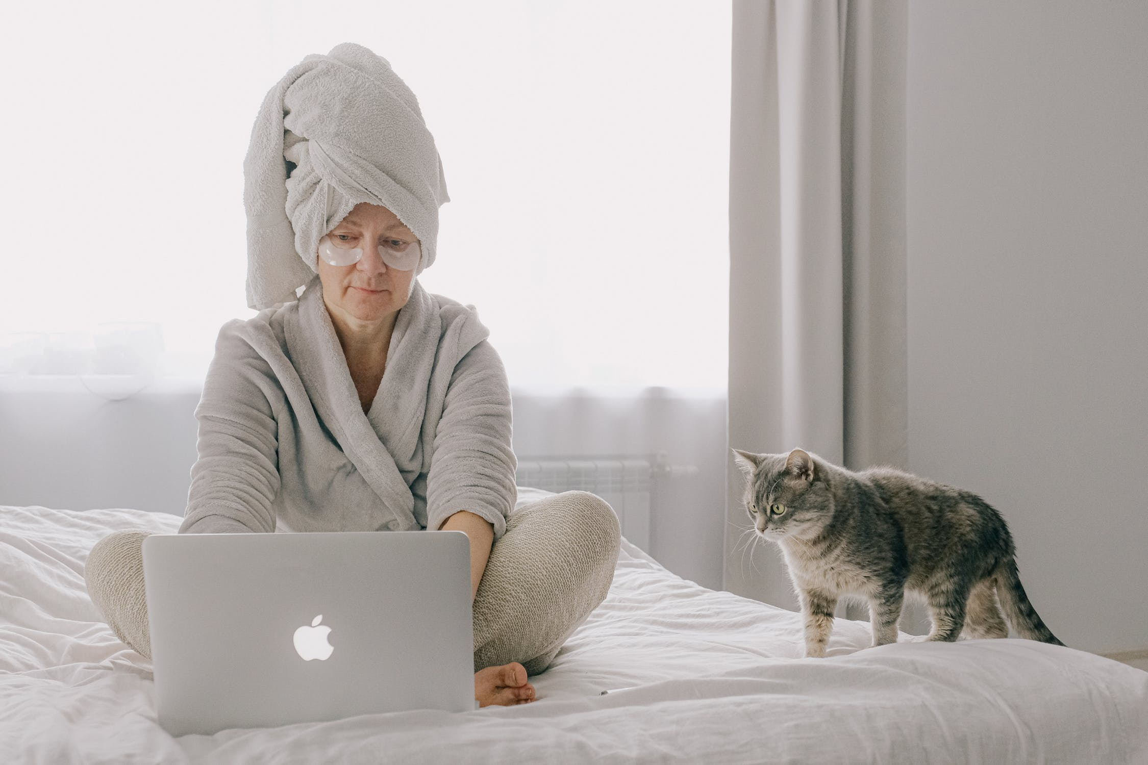 Veterinär online